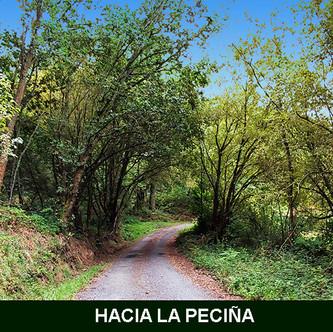 9-Hacia la Peciña-2-WEB.jpg