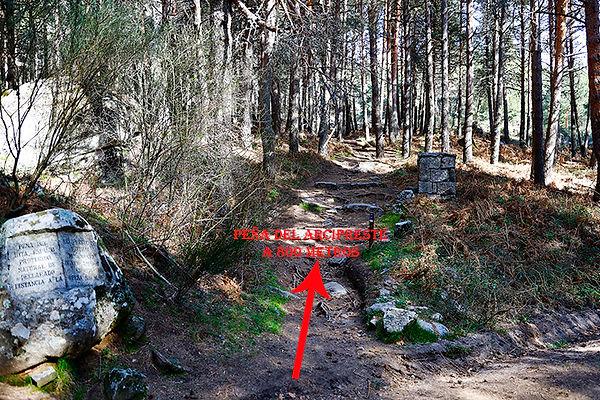 Desvio desde la pista forestal-WEB.jpg
