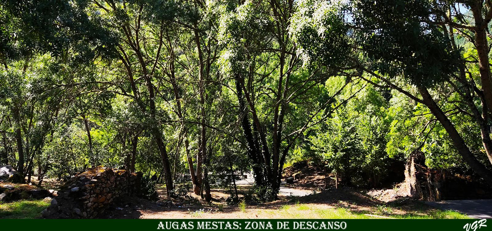 7-Augas Mestas zona estancial-WEB.jpg