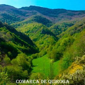 Comarca de Quiroga-WEB.jpg
