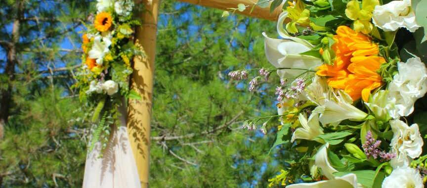 גוונא - אירועים בטבע