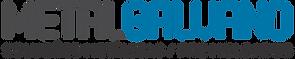 logo METALGALVANO.png