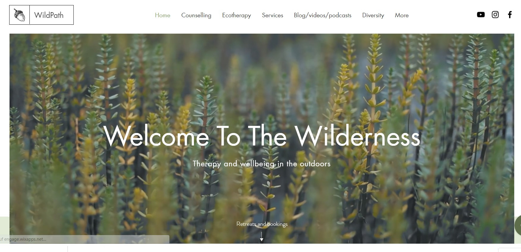 Website WildPath
