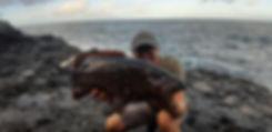 Zackenbarsch von Mike Lindström gefangen auf La Gomera