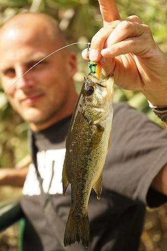 Angler zeigt Schwarzbarsch