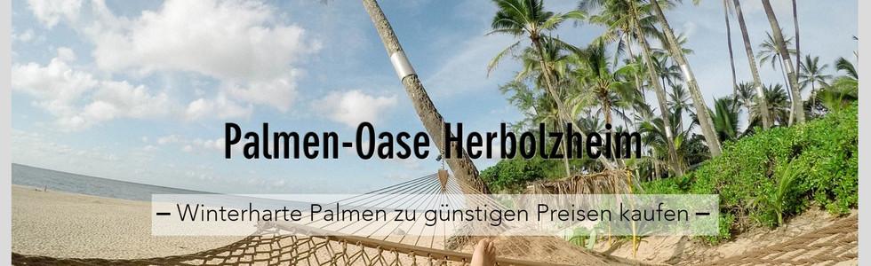 Wix-Website Beispiel Palmen-Oase