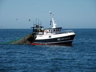 matelot à bord d'un navire de pêche