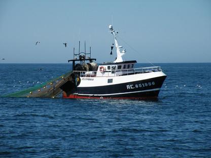 commandement sur des navires armés à la pêche sur des navires de pêche au large