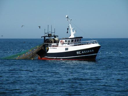 Second mécanicien à bord d'un navire de pêche