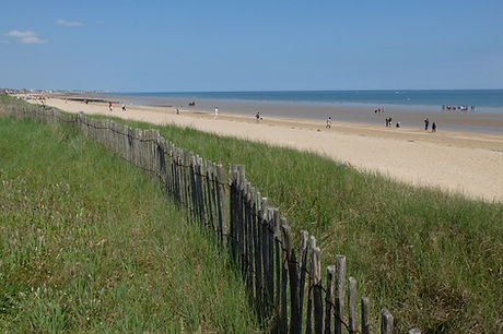 dune col.jpg
