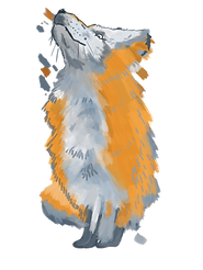 fox 3.png