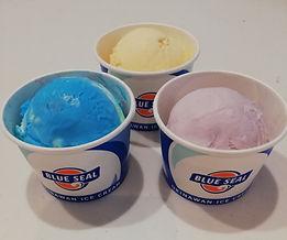 ブルーシールアイスクリーム.jpeg