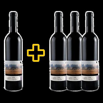 שלשיית הרי גליל - סירה + בקבוק מתנה
