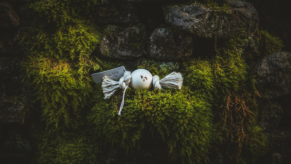 One Ball | Smug Mutts