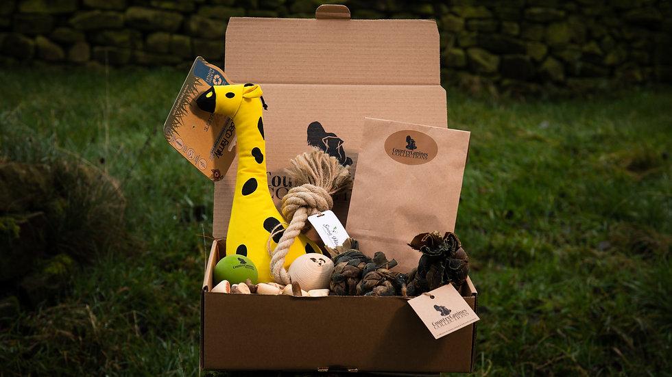 ECO GIFT BOX | Large Dog