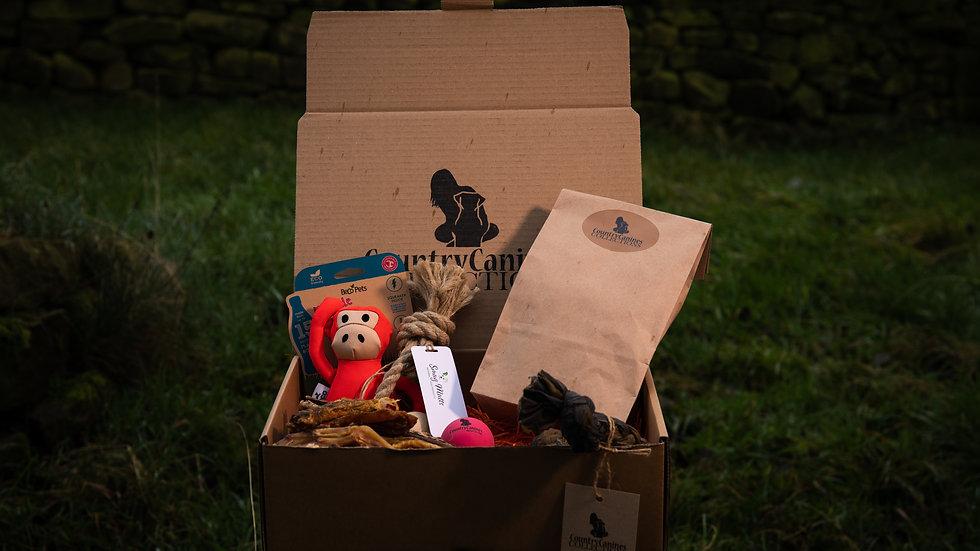 ECO GIFT BOX | Small Dog