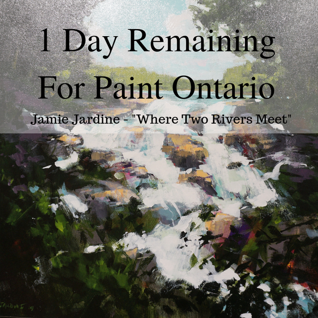 paint ontario 1 day