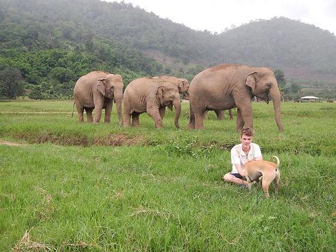 elephant_nature_park.jpg