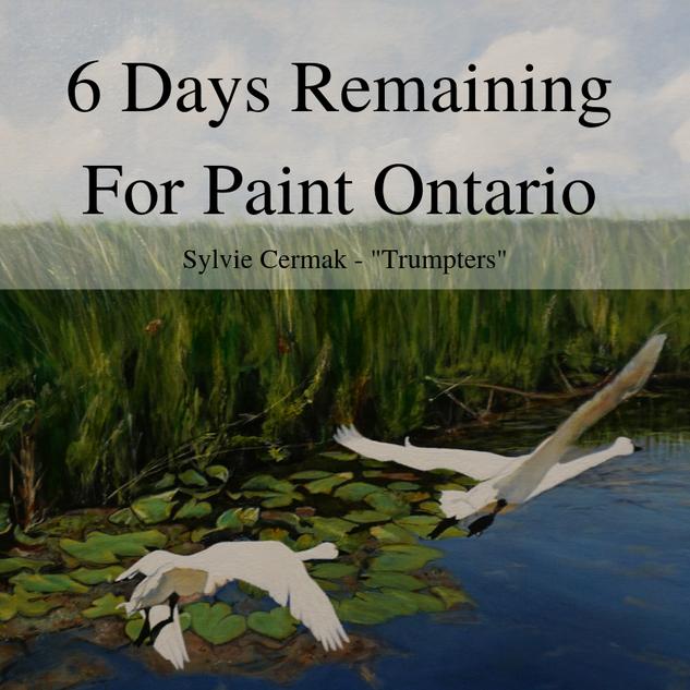paint ontario 6 days