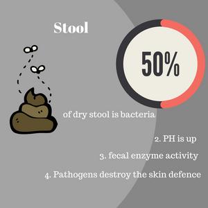 Factor 3: Stool