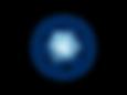 Paragon-Virtual-Logo