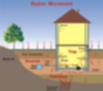 Radon Testing by ESG