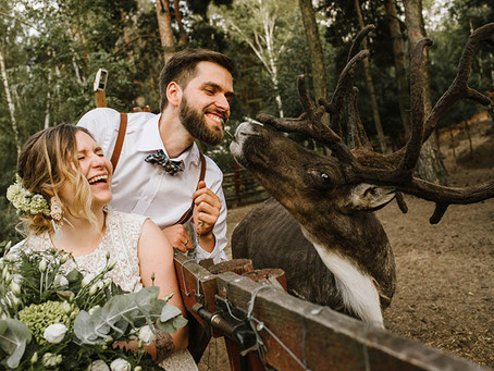 Ślub i wesele w Arendel | Basia i Łukasz | Fotograf ślubny Konin