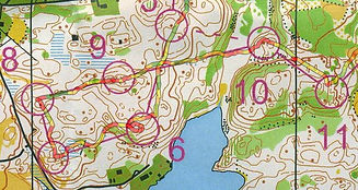 Orienteering Map with course