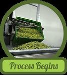 process-begins.png