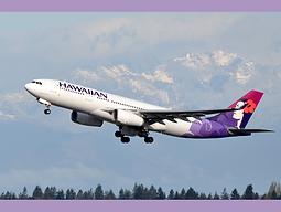 haiwaiian airline.png