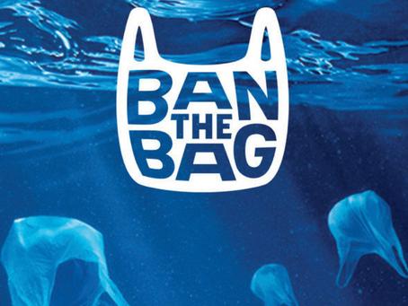 Goodbye Plastic Bags!