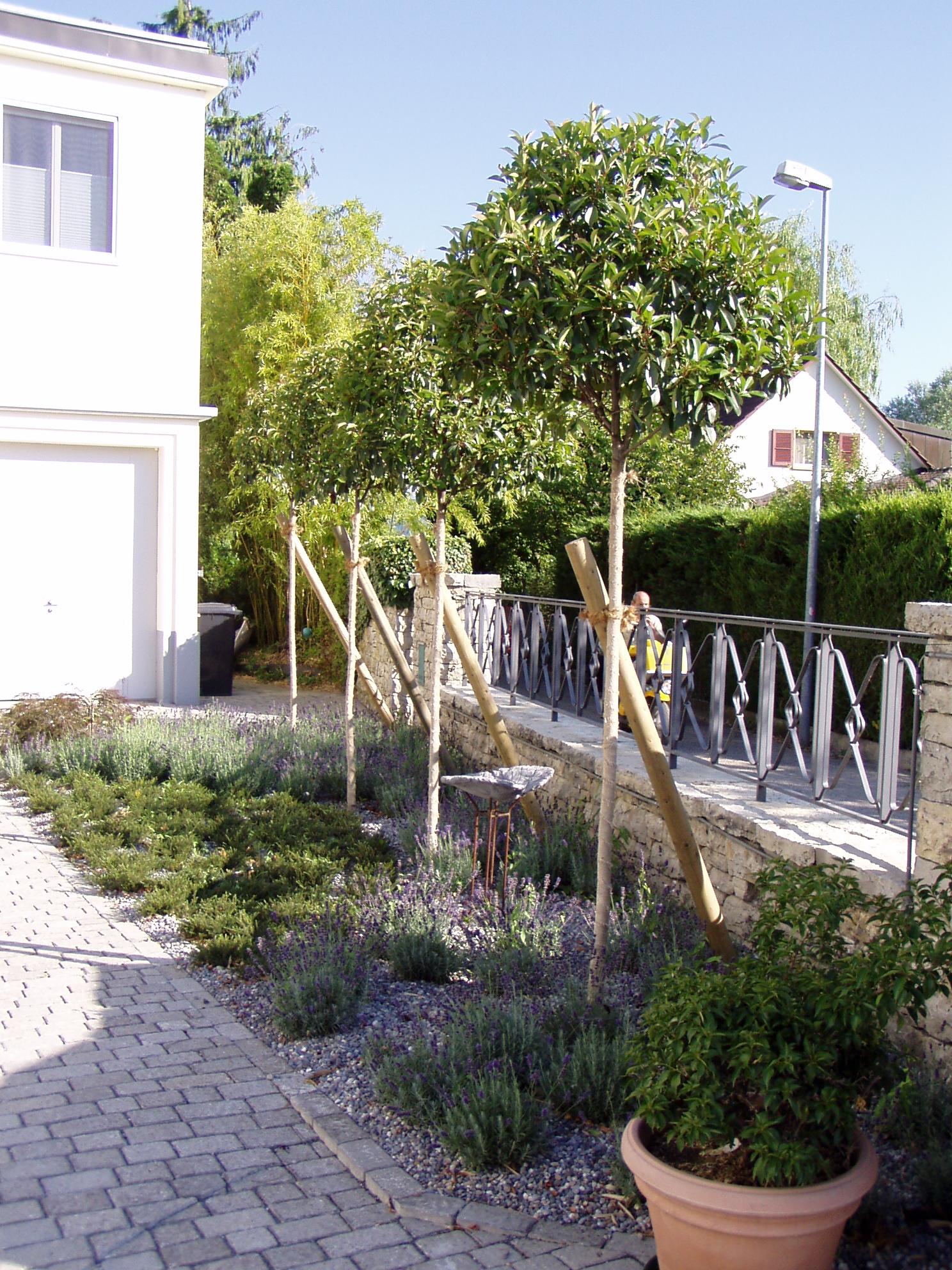 Gartenunterhalt