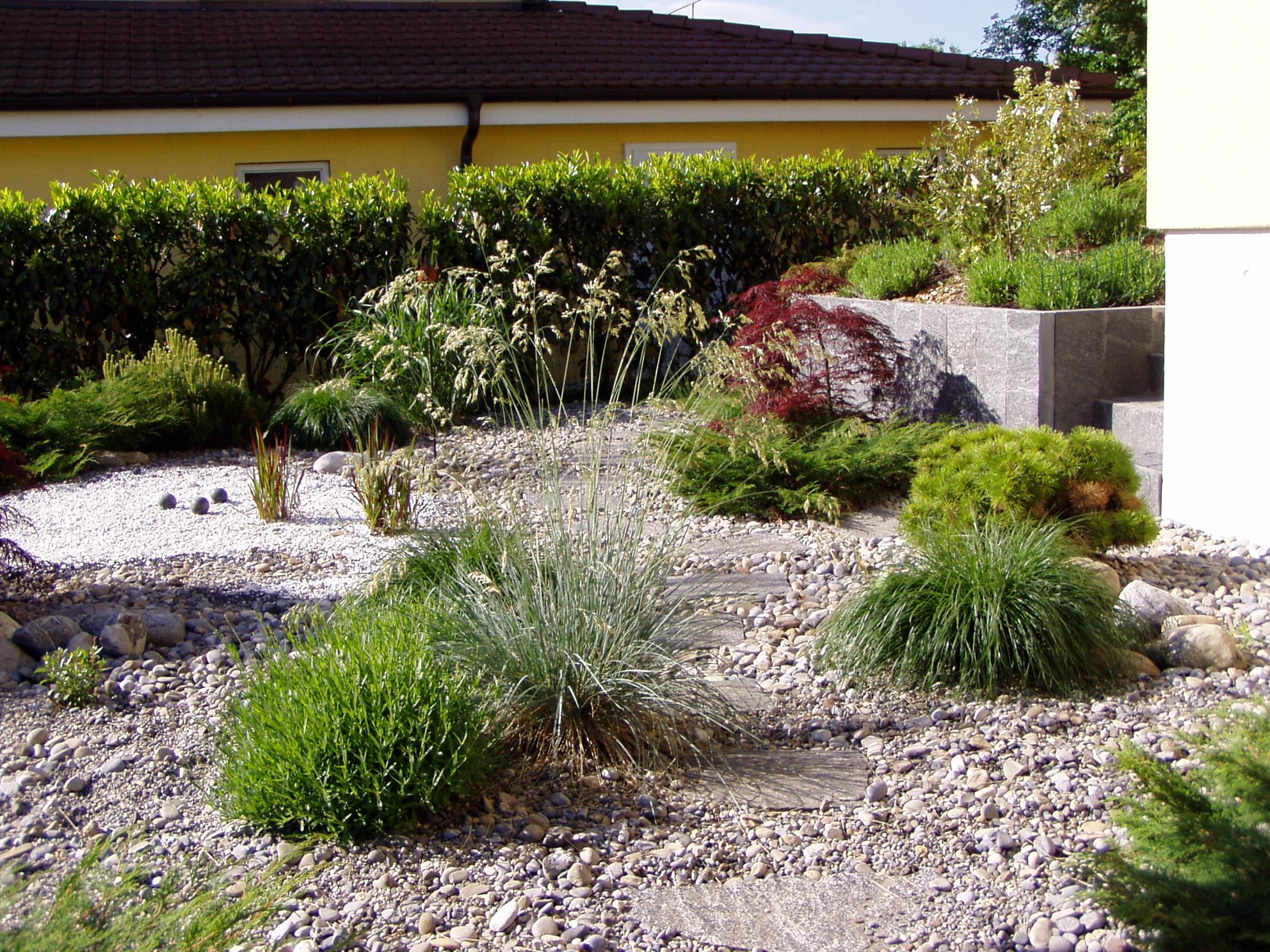 Gartenpflanzen