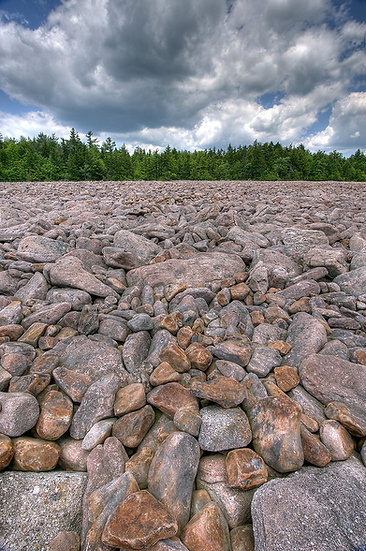BOULDER FIELD NEAR HICKORY RUN STATE PARK PA img#100720