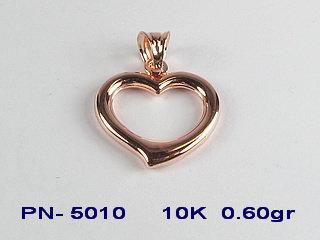 PN5010