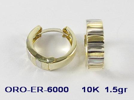 ER6000