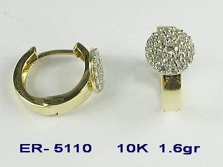 ER5110
