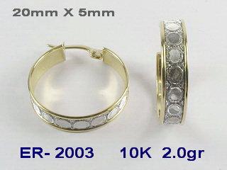 ER2003
