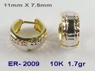 ER2009