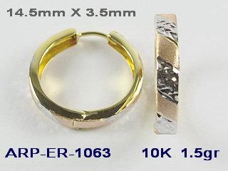 ER1063