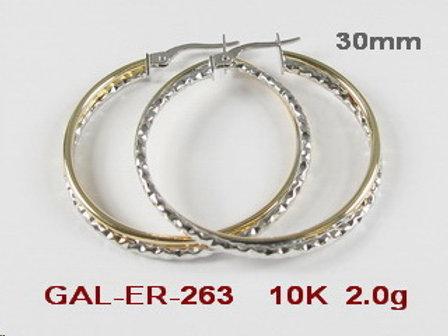 GAL263