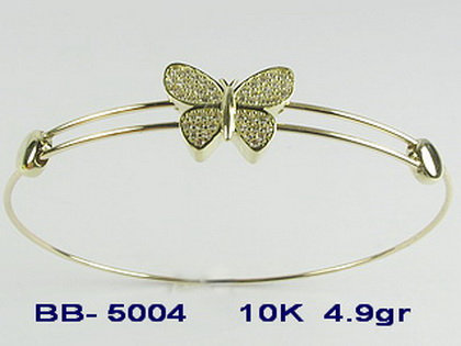 BB5004