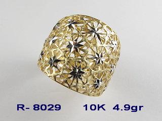 R8029