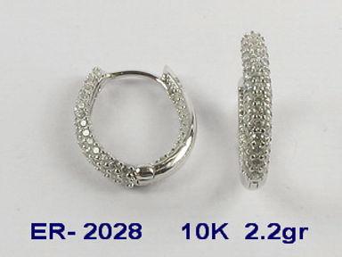 10K Cubic Earrings