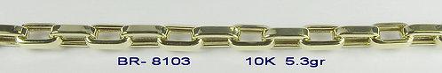 BR8103