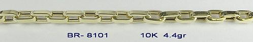 BR8101