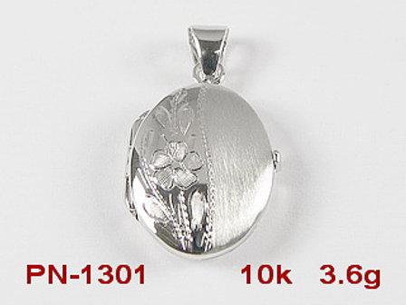 PN1301