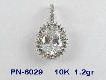 PN6029