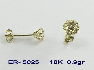 ER5025