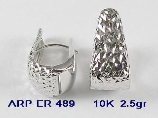 ER489